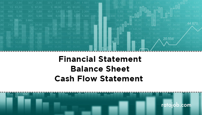 Financial Statement Balance Sheet Cash Flow Statement