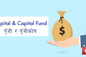 capital and capital fund