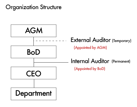 types of auditor